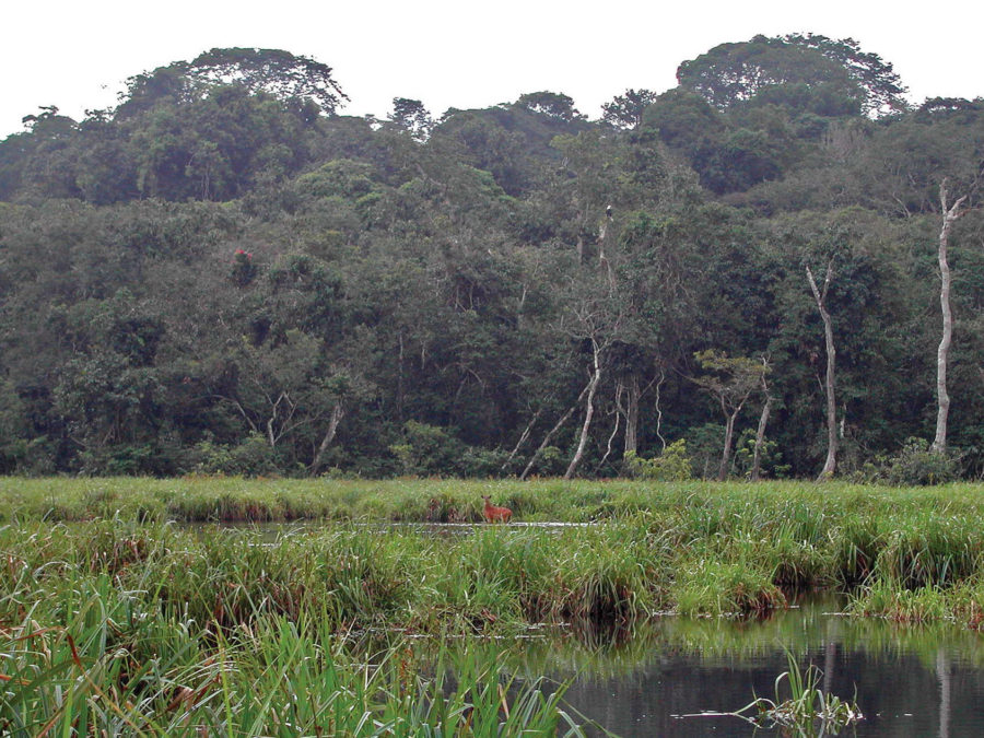 Mwangne National Park